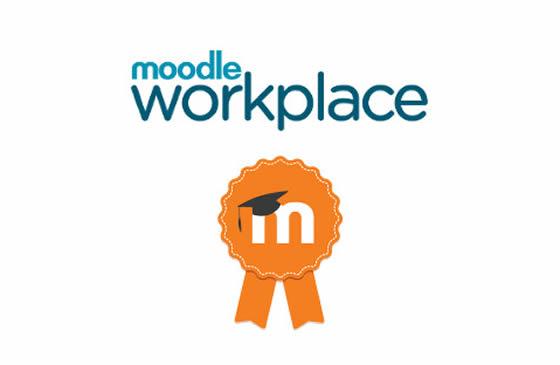 Moodle-Workplace-2.jpg